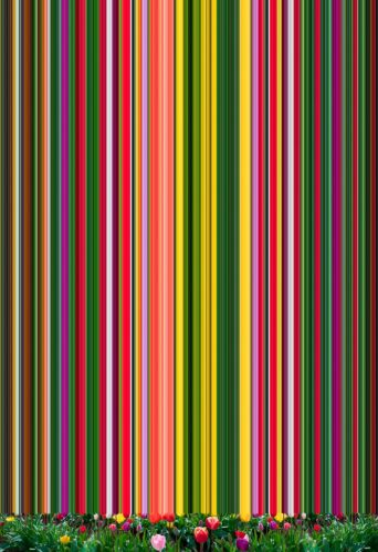c-erik-beglin-tulip-variation-94-2020